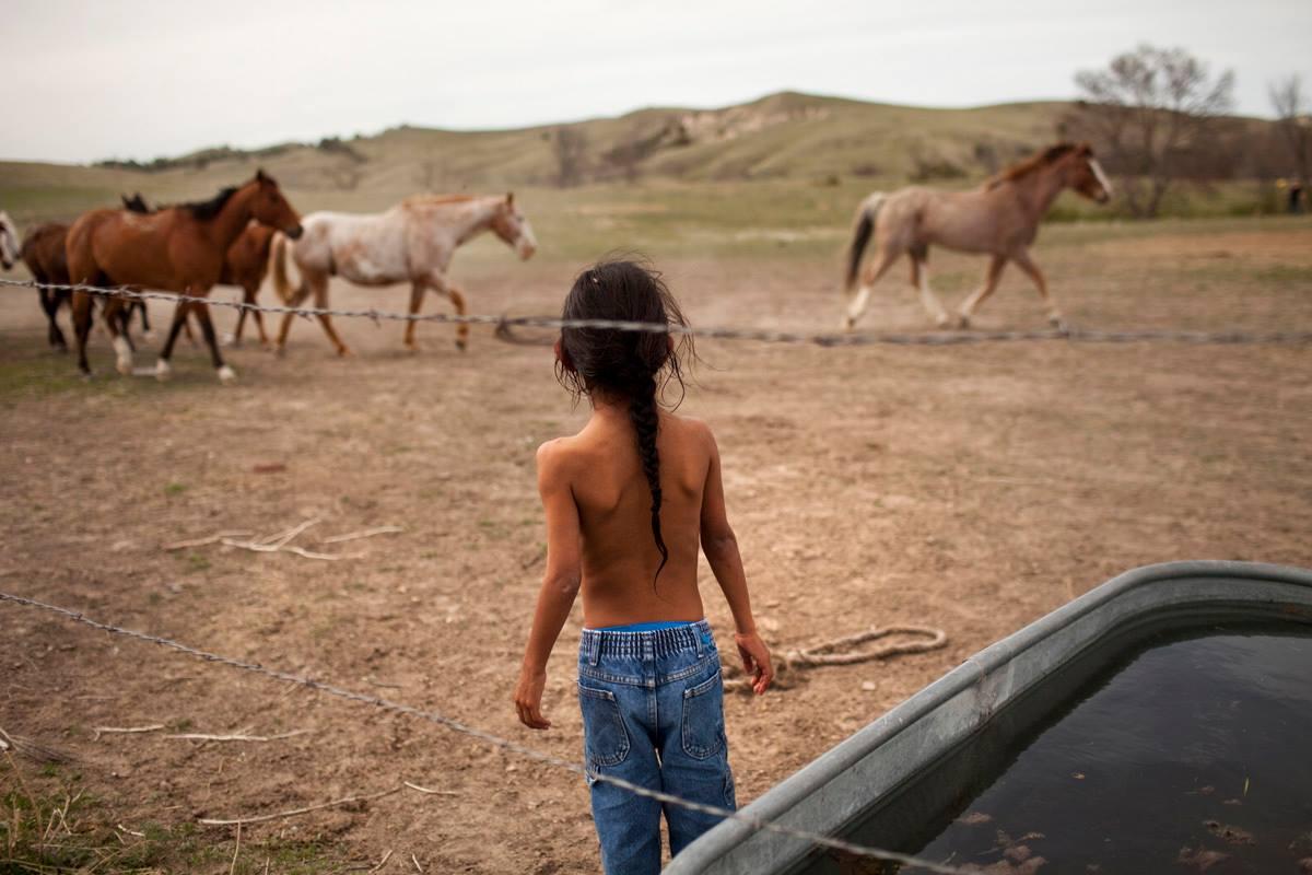 Децата и конете умеят да живеят